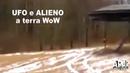 TOP 1 Avvistamento UFO e ALIENO a terra no data Fake? o Real? Sighting ufo ovni. Alex P.