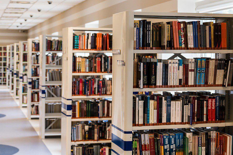 Бородинское сражение станет темой лекции в одной из библиотек Кузьминок
