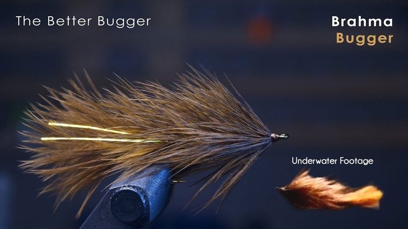 The BETTER Wooly Bugger! - UNDERWATER FOOTAGE! - McFly Angler Streamer Fly Tying Tutorials