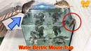 Top Glass Rat trap Best homemade water Mice trap Best electric rat trap Battery 12v