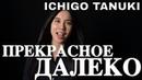 Ichigo Tanuki Прекрасное Далеко