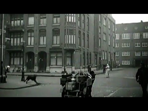1949 Nieuwe dierenambulance voor dierenasiel Polderweg in Amsterdam oude filmbeelden