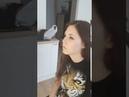 Фотосессия с фризом, фотограф Милосердова Юлия
