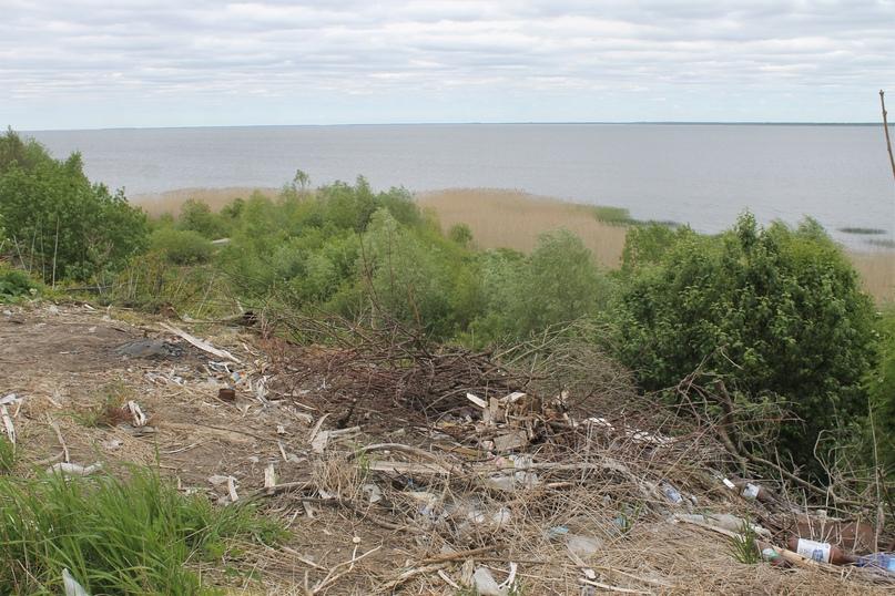 Операция «Залита»: Регоператор ликвидировал масштабную свалку ТКО на острове, изображение №17