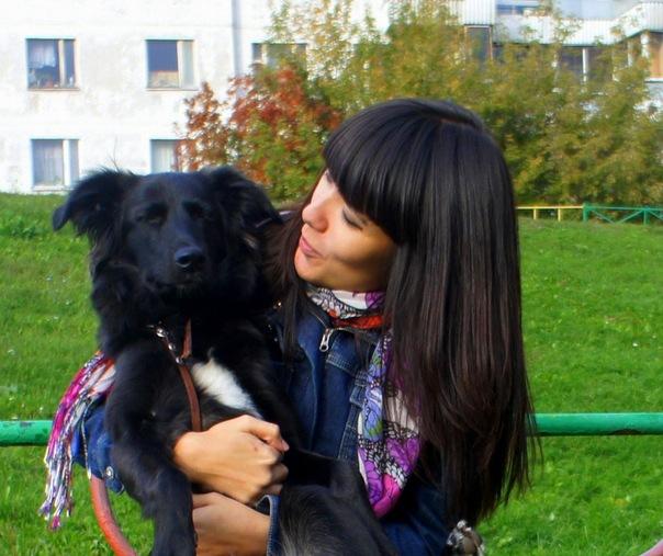 Друзья! Помогите, пожалуйста, перевезти собаку в Москву.  Вдруг вы или