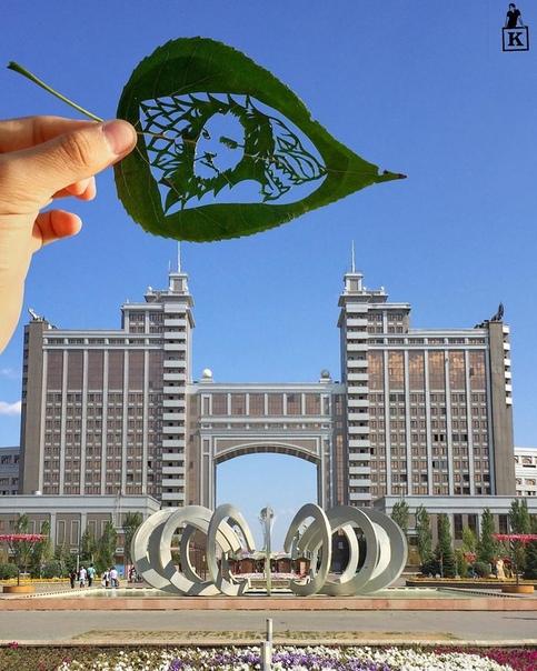 Работы известного в Казахстане художника Каната Нуртазина, создающего настоящие шедевры из опавших листьев Художник-самоучка, Канат увлекся рисованием в 2013 году. Вскоре он начал публиковать