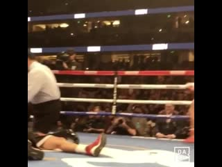 The ringside view of ryan garcia's ko is insane 🔥