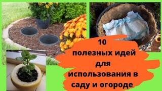 10 полезных идей для использования в саду и огороде