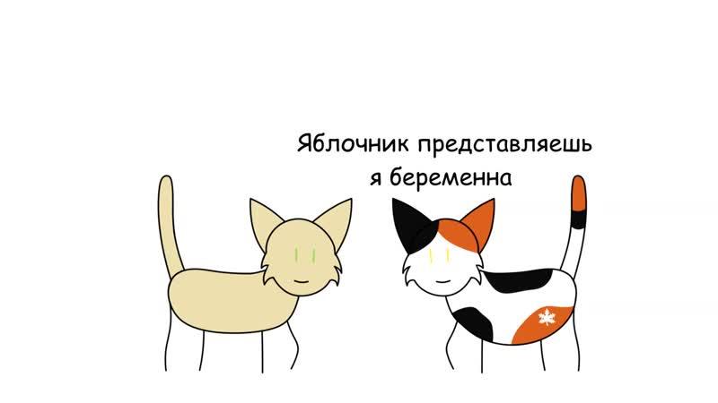 Коты воители Месть Кленовницы в двух словах mp4