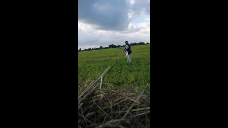 стрельба по сену