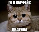 Персональный фотоальбом Бориса Бритвина