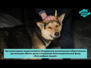 Гуманитарная помощь из Казани