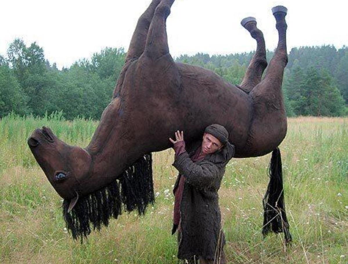 В КЧР у фермера исчез целый табун лошадей