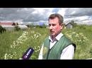 «В старом саду…» бывших дачников разыскиваю специалисты Росреестра в Марий Эл