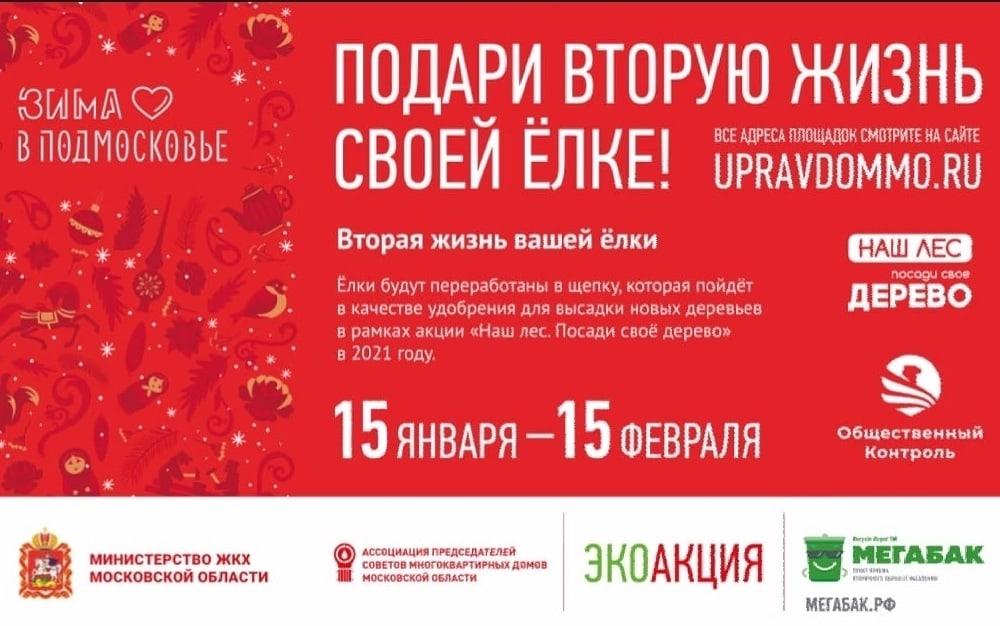 С 15 января по 15 февраля в Одинцовском округе откроется 11 пунктов приема новогодних ёлок на вторичную переработку, один из них в посёлке #Барвиха у дома 28
