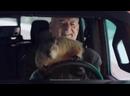 Ночь пожирателей рекламы. Jeep. Happy groundhog day