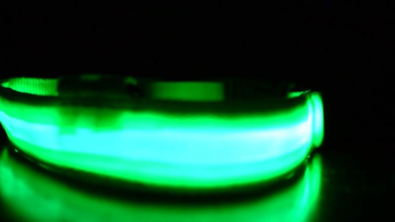 Светодиодный светящийся ошейник для собаки