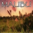 2017 Billboard Masters - Malibu - Tribute to Miley Cyrus