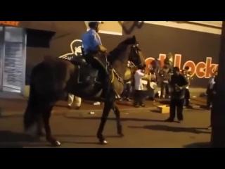 Танцующий конь Тони