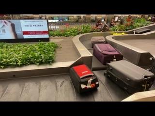 Необычная система доставки багажа в аэропорту Сингапура