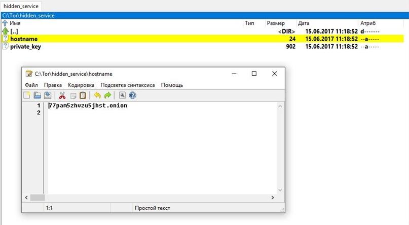 Tor в Windows: установка службы, создание скрытого сервиса, использование браузерами и для пентеста, изображение №8