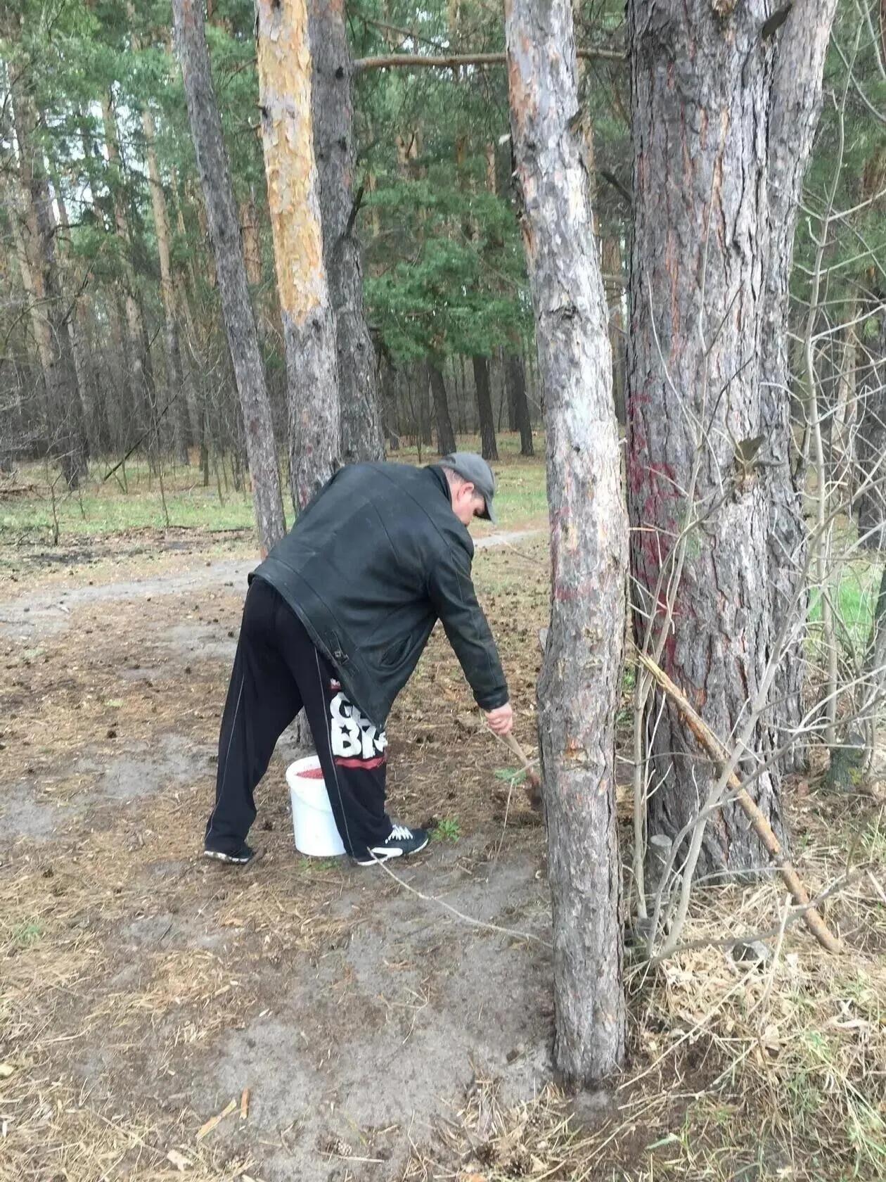 В Петровске началась весенняя дератизационная обработка территорий