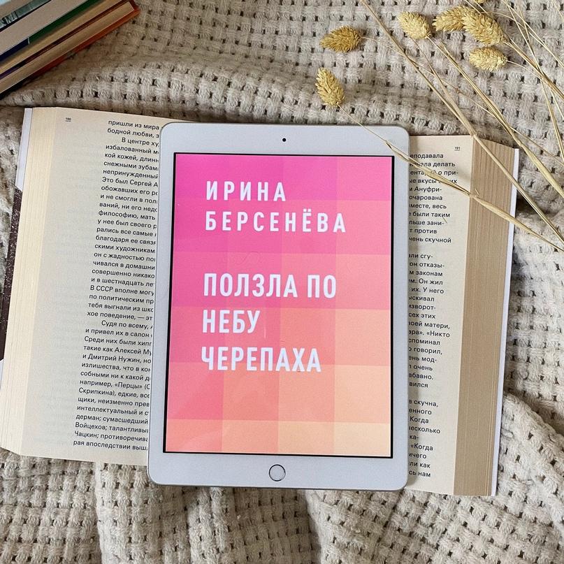 📖 «Ползла по небу черепаха», Ирина  Берсенёв