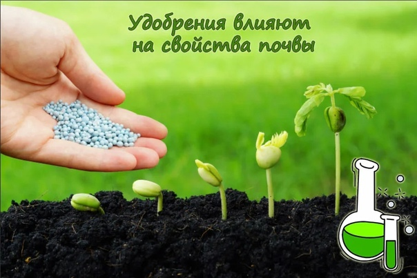 Удобрения влияют на свойства почвы.