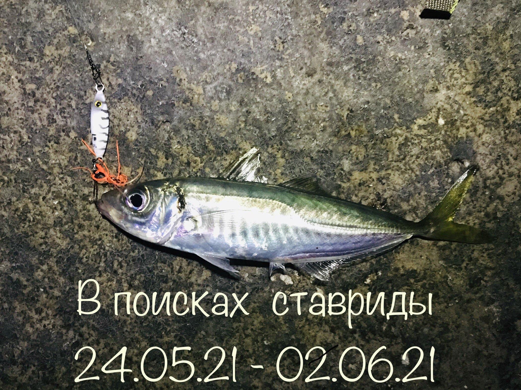 F3jXxyixP8w.jpg?size=2100x1575&quality=9