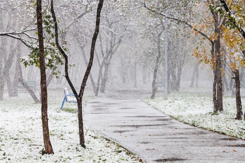 Синоптики пообещали ульяновцам первый снег  https://mosaica.ru/ru/ul/new