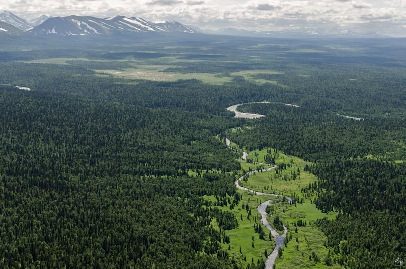 Голосуем за инвестиции в экологический туризм Коми, изображение №1