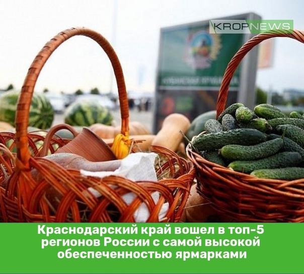 Краснодарский край вошел в топ-5 регионов России с самой ...