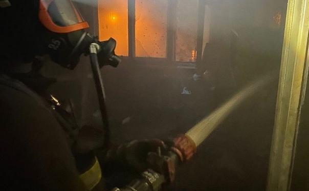 ✅ На пожаре в Новомосковске пострадал мужчина, одн...