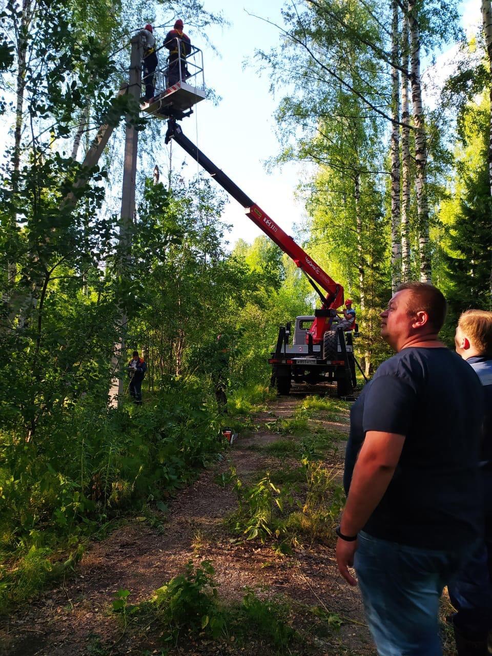 На Красном посёлке дерево упало на линию
