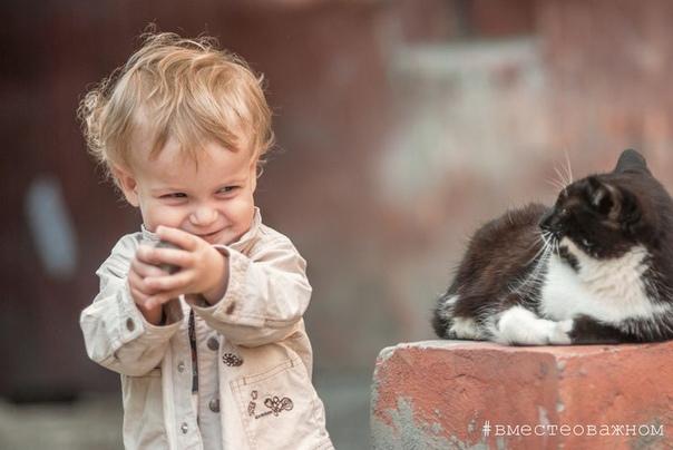 Отношения становятся счастливыми не потому, что люди так здорово ладят друг с другом, а потому, что они настойчиво преодолевают те моменты, где они не ладят
