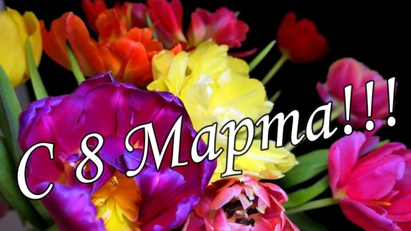 🌼🌸ОБАЛДЕННАЯ КРАСИВАЯ ПЕСНЯ НА 8 МАРТА 🌺🌹Супер поздравление 8 марта 🌷🌻С Международным женским днем🌹🌹
