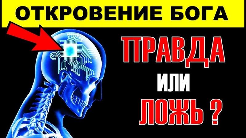 🔴Вся Правда о Опасности ЧИПИЗАЦИИ и БИОМЕТРИЧЕСКИХ ПАСПОРТОВ РОДИНА