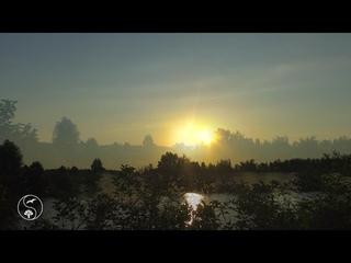 Нежнейший Рассвет. Восход Солнца | Приятные Звуки природы, пение птиц для Релаксации, Отдыха, Сна |