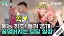 [인기급상승] 한국에서 동거 커플 관찰 예능을 보는 날이 오다니! 😘 대리 설렘 쩌는 빈지노♥스테파니 미초바 연애 일상 | 온앤오프 | Diggle