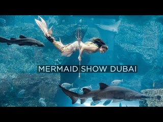 Mermaid Show in Dubai Mall Aquarium (2021)