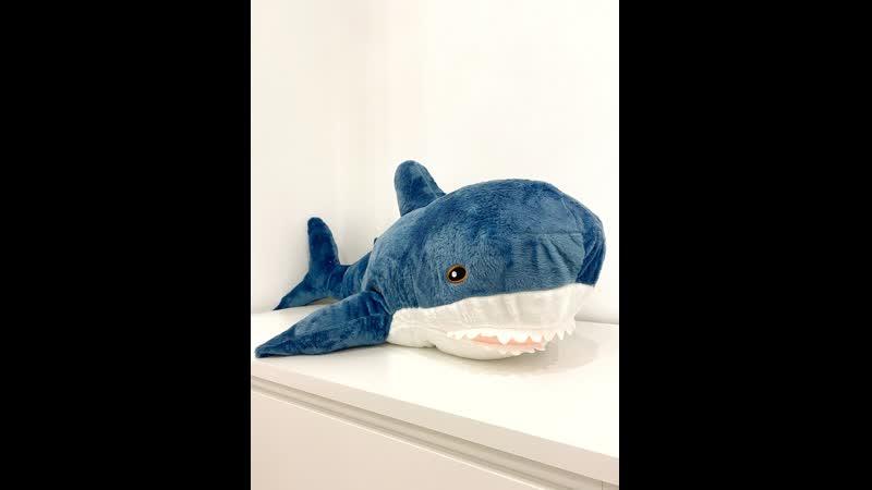 Акула 100см