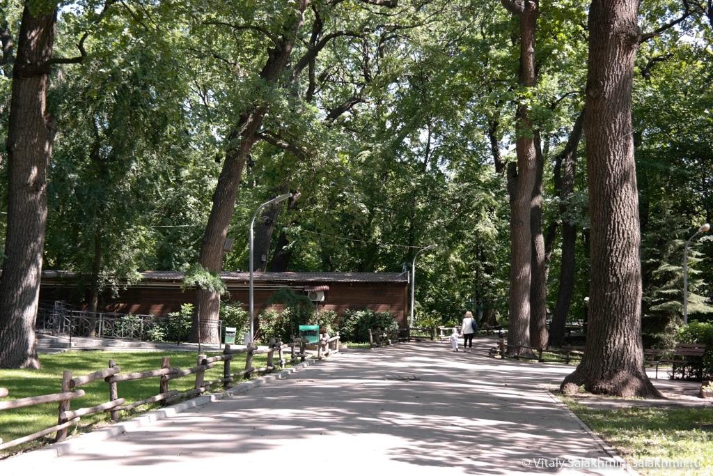 Центральный парк культуры и отдыха, Саратов 2020