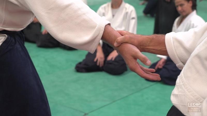 Aikido: Christian Tissier Berlin 2017