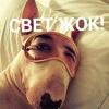 💥СВЕТ ЖОҚ!💥