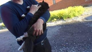 На видео Я (Татиана Салмановна Мактум Сайфуддин, моя кошка Матильда и мой друг Дмитрий Н  Егоров