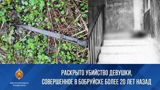 Раскрыто убийство девушки, совершенное в Бобруйске более 20 лет назад