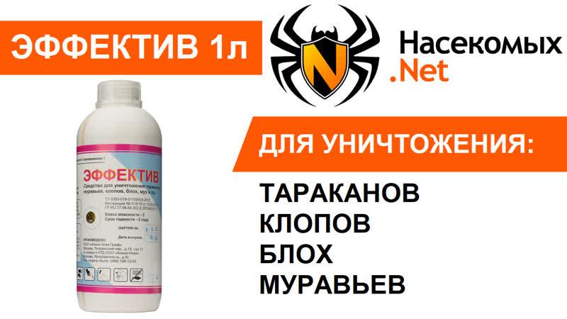 Вывести тараканов профессиональным средством Эффектив