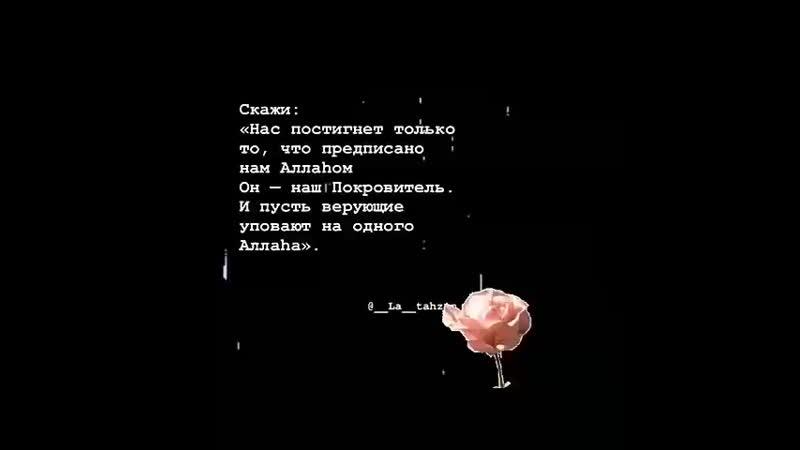VID_25641118_161704_111.mp4